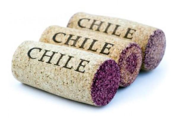 Rượu vang Chile dưới 200.000 đồng