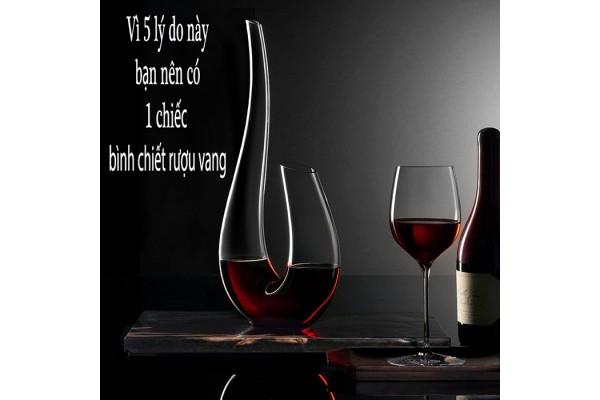 vì 5 lý do này bạn nên có 1 chếc bình chiết rượu vang