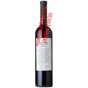 Rượu vang Trapiche Iscay 2010 2011