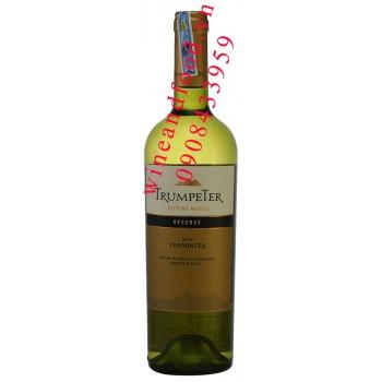 Rượu vang Trumpeter Torrontés Reserve 750ml