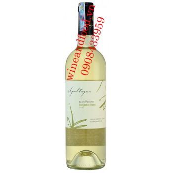 Rượu vang Apaltagua Sauvignon Blanc 750ml