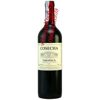 Rượu vang Tarapaca Cosecha 750ml
