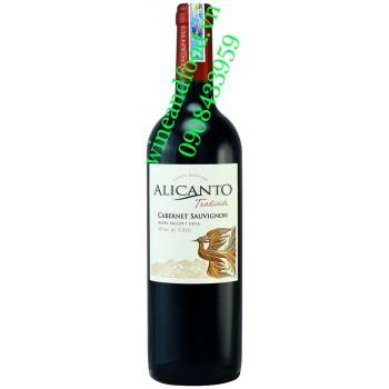 Rượu vang Alicanto Tradition Cabernet Sauvignon