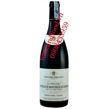 Rượu vang Coteaux Bourguignons Bouchard Pere & Fils Pinot Noir Gamay