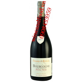 Rượu vang Domaine de Rochebin Bourgogne Pinot Noir 750ml