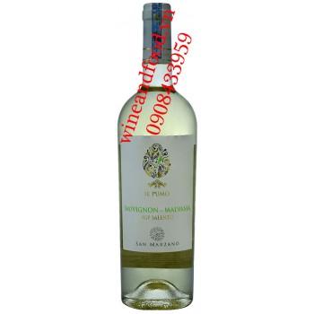 Rượu vang IL Pumo San Marzano Sauvignon Malvasia IGP