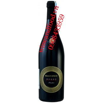 Rượu vang Magnifico Fuoco Primitivo Puglia IGT