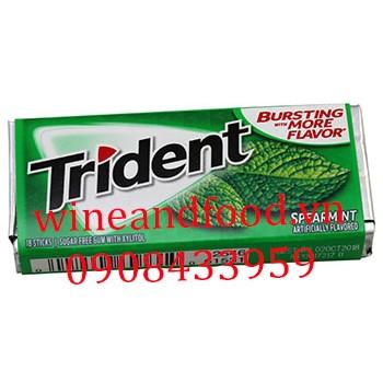 Kẹo chewing gum Trident bạc hà không đường 18 thanh
