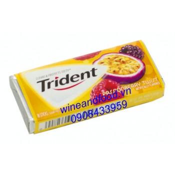 Kẹo gum Trident phúc bồn tử chanh dây 18 thanh