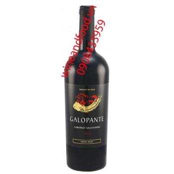 Rượu vang Galopante Cabernet Sauvignon