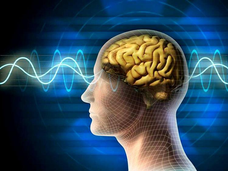 Socola giúp cải thiện chức năng não