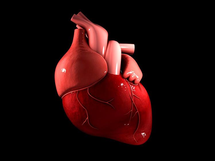 Socola giúp giảm nguy cơ mắc bệnh tim