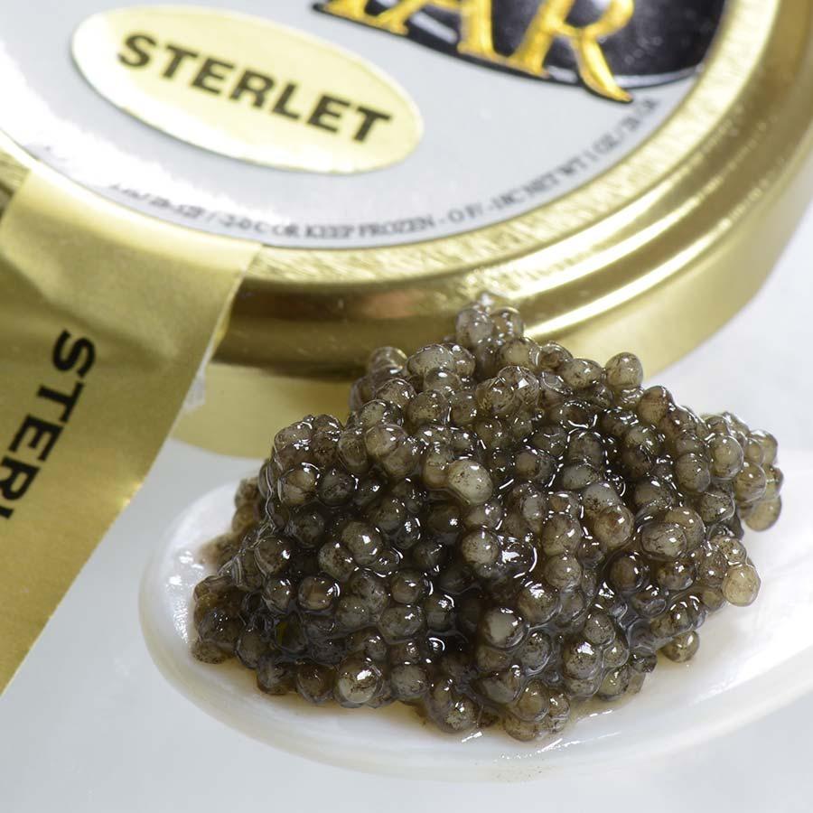 Trứng cá tầm Sterlet Caviar
